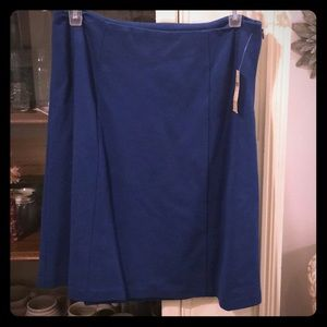 NWT lovely blue Coldwater Creek skirt